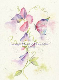SWEET PEAS & BUTTERFLY, FINE ART/GICLEE PRINT. A4 SIZE. ARCHIVAL QUALITY INKS | eBay