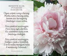 Scrapbook, Spring, Flowers, Plants, Scrapbooking, Plant, Royal Icing Flowers, Flower, Florals
