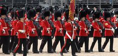 Changing the Guard | About / The Household Division