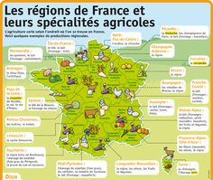Les régions de France et leurs spécialités agricoles A Level French, Ap French, Food In French, French History, Learn French, Visit France, France Europe, French Education, French Expressions