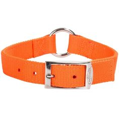 "Blaze Orange O-ring High Visibility 22"" Dog Collar Duck Hunting Buckle Prong  #teamrealtree #duckhunting #duckdynasty"
