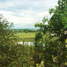 Beautiful NoVA #shenandoahvalley #northernvirginia #nova #laubergeprovencale
