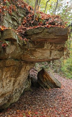 The Ledges at Fitzgerald Park, Grand Ledge, Mi. I grew up out here and loved going to this park with the fam.