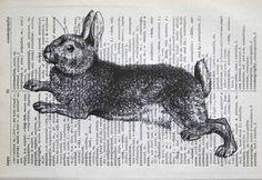 Bunny season is coming - leaping rabbit print on salvage English-French dictionary, by CrowBiz