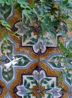 Tiles and jasmine - Alcazar garden, Seville, Spain - Photo by Chantal F