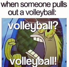 This is all the volleyball players during P. Volleyball Memes, Play Volleyball, Volleyball Players, Softball, Volleyball Problems, Volleyball Motivation, Volleyball Training, Volleyball Pictures, Sport Quotes