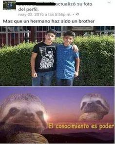 ★★★★★ Memes en español chistosos: El conocimiento es poder I➨…