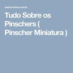 Tudo Sobre os Pinschers ( Pinscher Miniatura )