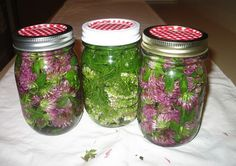 How to Make Your Own Tinctures from Herbs at Home. What is a Tincture?  A tincture is a type of herbal preparation in which the alkaloids, glycosides, minerals, and essential oils of a plant are extracted into a solvent. The liquids that are most often used as solvents are high-proof alcohols such as vodka or brandy, or occasionally apple cider vinegar or even vegetable glycerin. The latter are sometimes used for children's preparations, or by those who abstain from alcohol of any kind…