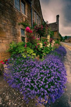 Cotswolds in bloom English Country Gardens, English Countryside, Beautiful Landscapes, Beautiful Gardens, Places Around The World, Around The Worlds, England, Garden Inspiration, The Good Place
