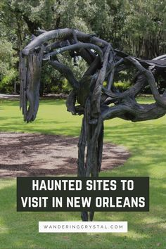 scariest place in new orleans, haunted places new orleans, most haunted place in new orleans, new orleans spooky, real haunted houses in new orleans, ghosts of new orleans, voodoo in New Orleans, haunted hotel in New Orleans, Vampires in New Orleans, Casket Girls in New Orleans, new orleans ghost sightings, scary things to do in new orleans, spooky New Orleans, dark side of New Orleans, dark things to do in New Orleans #NewOrleans #Spooky #haunted #thingstodo #louisiana #wanderingcrystal New Orleans Vacation, New Orleans Hotels, New Orleans Travel, Scary Things, Scary Places, Places To Visit, Real Haunted Houses, Haunted Hotel, Paranormal Society