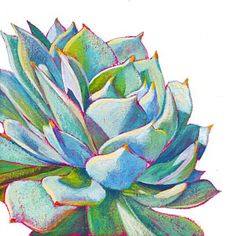 Succulent Painting - Eye Candy by Athena  Mantle