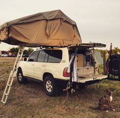 http://www.motorhomepartsandaccessories.com/motorhomeroofladders.php has some information on how to shop for the right roof ladders for a motorhome.