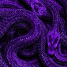 Dark purple wall collage kit