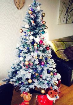 Christmas tree up  I'm now in the Christmas spirit