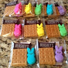 Made these Easter Bunny Peeps S'mores Kits..