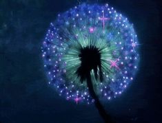 Find GIFs with the latest and newest hashtags! Search, discover and share your favorite Pretty Flowers GIFs. The best GIFs are on GIPHY. Gif Animé, Animated Gif, Força Interior, Glowing Flowers, Magic Garden, Fairies Garden, Moon Garden, Dandelion Wish, Dandelion Art