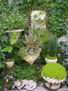 Small gardens in unusual place | Backyards Click