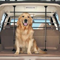 Deluxe Adjustable Tubular Dog Guard// Pet Barrier for JEEP GRAND CHEROKEE 99-04