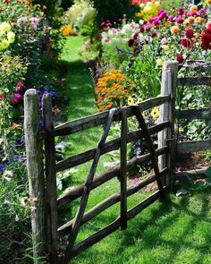 This reminds me so much of the Bisswangers summer garden! This reminds me so much of the Bisswangers summer garden! The post This reminds me so much of the Bisswangers summer garden! appeared first on Farah& Secret World. Garden Fencing, Garden Landscaping, Landscaping Ideas, Garden Bed, Backyard Ideas, Garden Planters, Old Garden Gates, Wooden Garden Gate, Box Garden