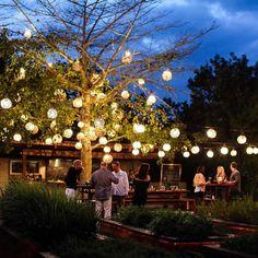 www.littlerugshop.com Dinner under this gorgeous Mayan tree.  #dreamy #travel #TGIF #romantic #playadelcarmen #WLFKtravelAPP #mexico by kattanita