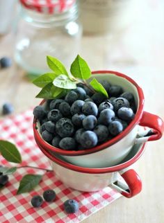 Sun-kissed, fresh-picked blueberries in the morning.