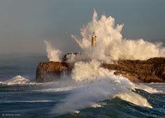 Seagulls and lighthouse Mouro Island, Santander, Cantabria - Spain