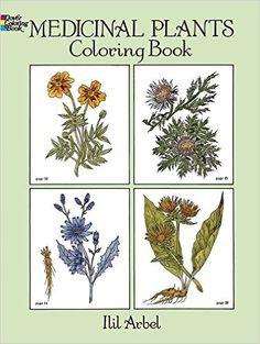 Medicinal Plants Coloring Book Dover Nature Ilil Arbel Books