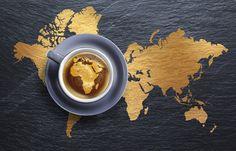 Conférence Scientifique du Café Africain Novembre 2016 à Yaoundé,Cameroun