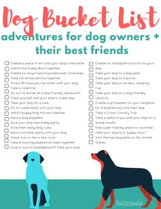 Humans have a bucket list, so why not have one for you and your dog to enjoy together? Here is a FREE Dog Bucket List that you can print and decide on your adventures. Puppy Care, Pet Care, Dog Bucket List, Bucket Lists, Adventure Bucket List, Diy Pet, Easiest Dogs To Train, Dog Facts, Free Dogs