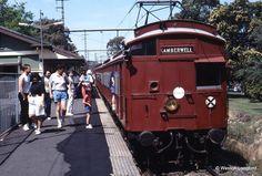 Alamein station 1981.  Weston Langford photo