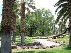 El Parque de La Granja, tiene una extensión muy amplia de instalaciones para la práctica deportiva al aire libre. Cuenta con amplios caminos de asfalto y de tierra batida, rodeados por parcelas ajardinadas. Tenerife, Plants, Santa Cruz, Tarmac Driveways, Farmhouse, Community, Earth, Islands, Parks