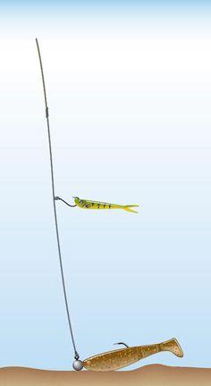 ᐅ Die Drop Shot Montage: Anleitung zum Fangerfolg [Update Bass Fishing, Crappie Fishing Tips, Catfish Fishing, Fishing Store, Fishing Rigs, Fly Fishing Rods, Sport Fishing, Sea Fishing, Pesca Spinning