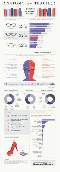 Anatomy of a Teacher infographic - #teachers // infographics for teachers
