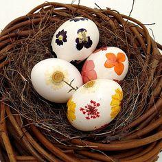 Easy Pressed Flower Easter Egg Tutorial