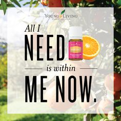 This  Pin was discovered by Young Living Essential Oils. Discover (and save!) your own Pins on Pinterest.