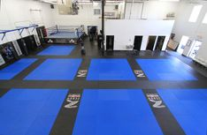 The Academy MN Martial Arts   http://theacademymn.com/