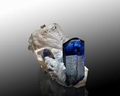 Tanzanite from the Merelani Mine, Tanzania.  Die beste Matrixstufe der Mine (13 cm) / The best specimen (13 cm) (F: Malte Sickinger)