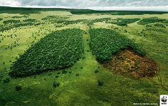 WWF meilleures campagnes de publicite 12