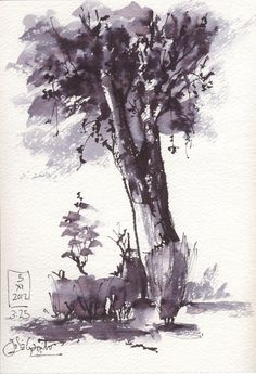 Artimañas: Pluma caligrafía china - DIBUJOS - Tinta y pincel de agua