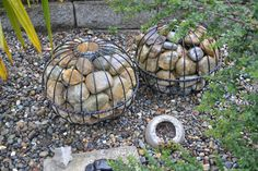 Gabion spheres -  two hanging planters wired together?