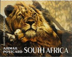 Issued of August 2007 Lion - Series - The Big Five Postage Stamps, Landscape Photography, South Africa, Lion, Cats, Big 5, African Animals, French Language, Stamps