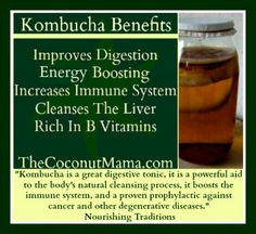 """Kombucha is a great digestive tonic, it is a powerful aid to the body's natural cleansing process, it boosts the immune system, and a proven prophylactic against cancer and other degenerative diseases."" – Nourishing Tradition"