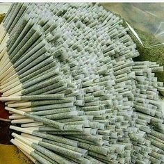 Cannabis is a great source of medicine. We sell Medical and Recreational marijuana. Based on the patient's medical report and marijuana card. Cigarette Aesthetic, Weed Shop, Weed Art, Marijuana Plants, Cannabis Plant, Buy Weed Online, Smoking Weed, Medical Marijuana, Drugs
