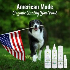 Support USA Made American Manufacturing, American Made, 2 In, Pure Products, Usa, Dogs, Pet Dogs, Doggies, Dog