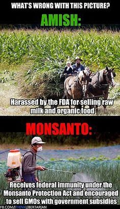 "GMO's and Monsanto…I have said many times our government is, upside down, backwards and inside out when it comes to making decisions pertaining to our lives and what we as a ""free society"" choose to eat and drink."