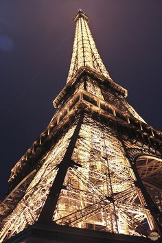 I saw the Eiffel Tower lit up at night in person! So beautiful!