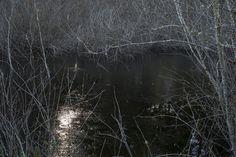 Green River Land - Alan Hunter