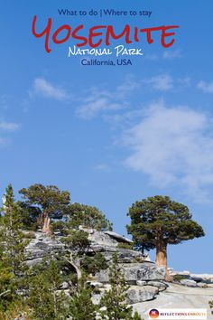 Our Travel Guide to Yosemite National Park will help you plan the best outdoor adventure that you can. We help you find a place to stay whether you are camping or lodging, know where to go and what to do. Click here to start planning your Yosemite adventure today. #camping #hiking #adventure #California #Yosemite #USA #wildlife #lodging #outdoorfun