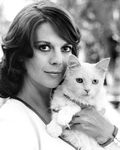 Natalie Wood with a cat from Peeper Vintage Hollywood, Classic Hollywood, Celebrities With Cats, Celebs, Miracle On 34th Street, Splendour In The Grass, Wood Cat, Natalie Wood, Cat Boarding